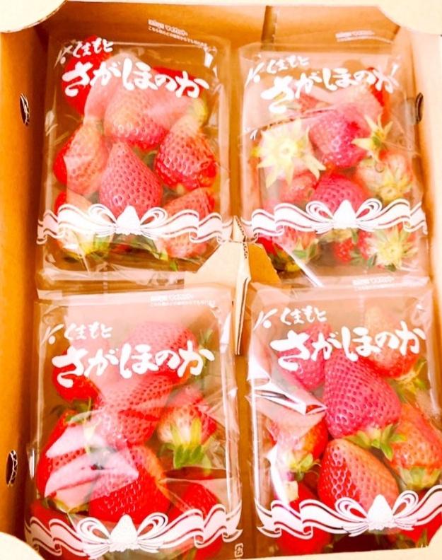 いちご🍓イチゴ🍓莓🍓